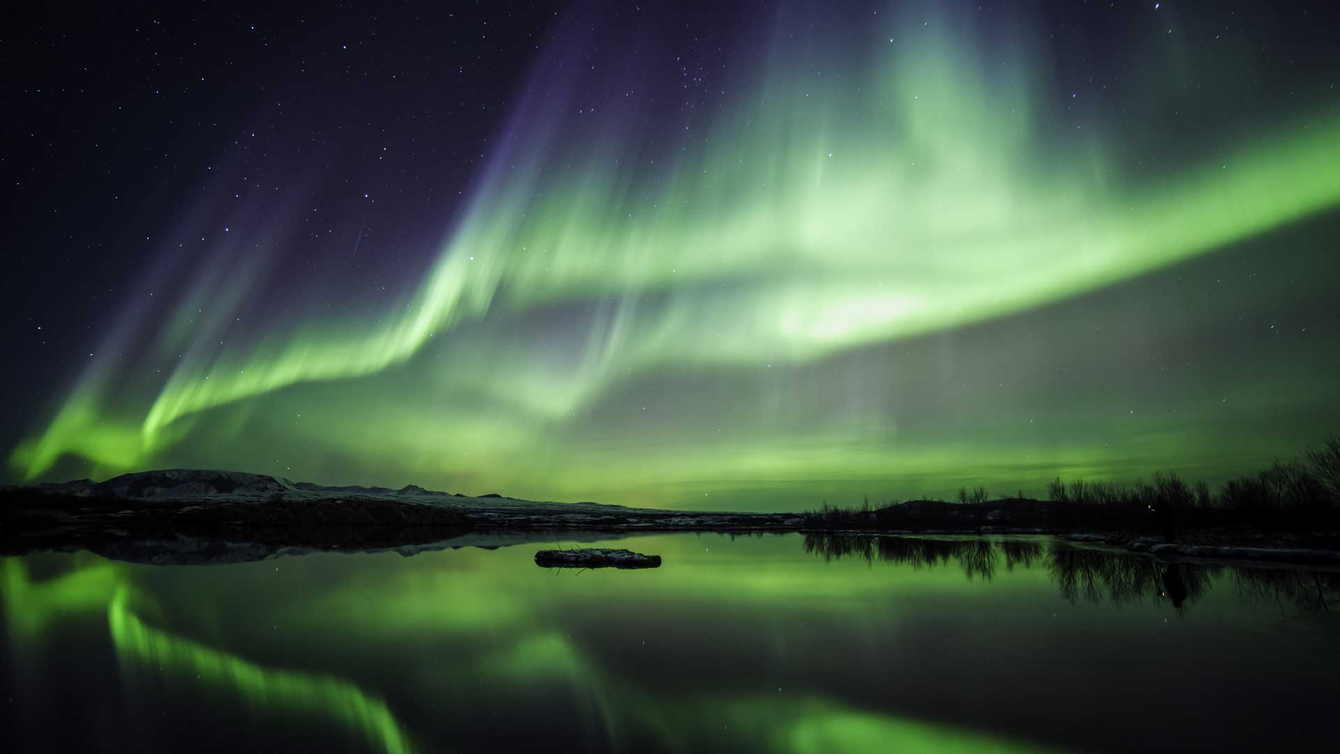 iceland-northen-lights-wolfare